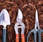 An Efficient Checklist for Garden Maintenance